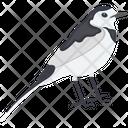 Gauraiya Bird Icon