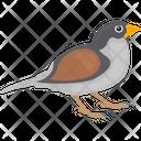 Gauraiya Sparrow Icon
