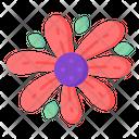 Gazania Flower Icon