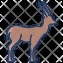Gazell Animal Wildlife Icon