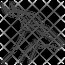 Gazelle Animal Wild Animal Icon
