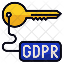Gdpr Access Key Icon