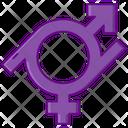 Gender Fluid Icon
