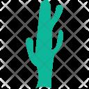 Generic Tree Cactus Icon