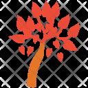 Generic Tree Leafy Icon
