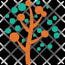 Generic Tree Circular Icon