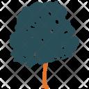 Generic Tree Nature Icon