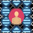 Genetic Human Dna Icon