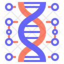 Genetic Dna Genetic Chromosome Icon
