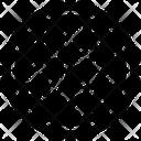Genetics Chromosome Cells Dna Icon