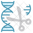 Genetics experiment Icon
