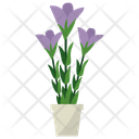 Gentian Potted Plant Icon