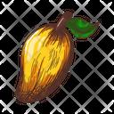 Genus Mangifera Mango Tree Icon