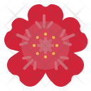 Geranium Flower Smell Icon