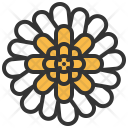 Gerbera Flower Icon