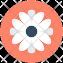 Gerbera Daisy Flower Icon