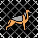 German Shepherd German Shepherd Icon