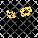 Germination Icon