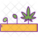Germination Seeding Growth Icon