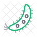 Germs Virus Bacteria Icon