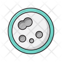 Germs Bacteria Lab Icon