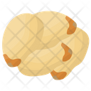 Gingko Nut Japanese Nuts Food Nuts Icon