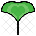 Ginkgo Herbal Leaf Icon