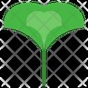 Ginkgo Herbal Leaf Icon