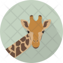 Giraffe Head Mammalia Icon