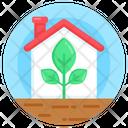Glasshouse Icon