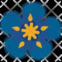 Glcksbringer Kleeblatt Icon Icon