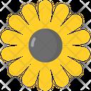 Gloden Marguerite Icon