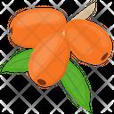 Goji Berries Icon