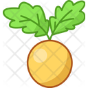 Beet Golden Healthy Icon