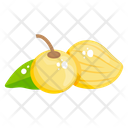 Golden Berries Cape Gooseberry Fruit Icon