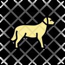 Golden Dog Golden Retriever Icon