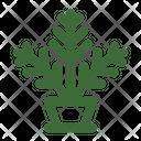 Fern Houseplant Pot Plant Icon