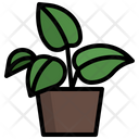 Golden Pothos Plant Nature Icon