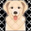 Golden Retriever Icon