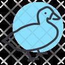 Goose Fowl Bird Icon