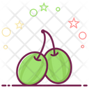 Gooseberries Fruit Organic Food Icon