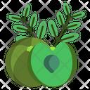 Gooseberry Fruit Food Icon