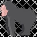 Gorilla Animal Wildlife Icon