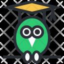 Graduate Owl Graduation Icon
