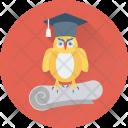 Graduate Owl Degree Icon