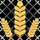 Grain Wheat Crop Icon