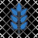 Grain Wheat Plant Icon