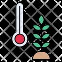 Wheat Grain Temperature Icon