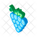 Grape Wine Berry Icon