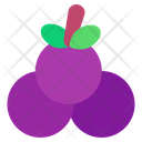 Grape Grapes Grape Fruit Icon